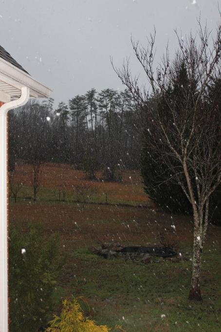 Snow: 1-17-2013