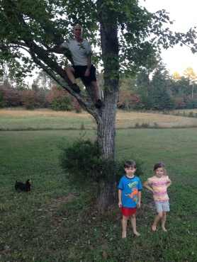 Adopt a Tree: October 10, 2013. Our Maple Tree is still quite green and Carter & Ammon can still wear shorts
