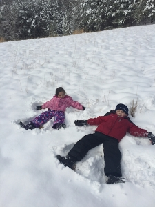 Ammon & Carter make snow angels on Snowmageddon Day = February 26, 2015