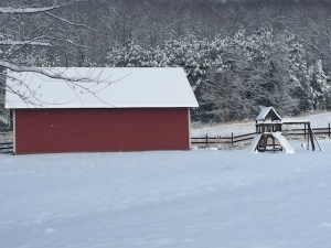 Our Barn, Play Park, & the edge of our upper field at the foot of Grindstone Mountain
