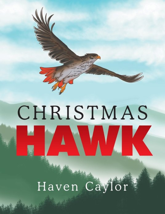 """Christmas Hawk"""