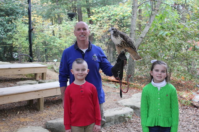Rock City's Birds of Prey Red-tailed Hawk, Cody